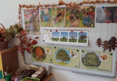Obrazek galerii Święto Drzewa w grupie ELFY